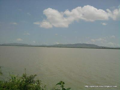 Laguna de Magdalena