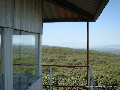 Mesa Nejahuate vista desde Torre2 (BLP)