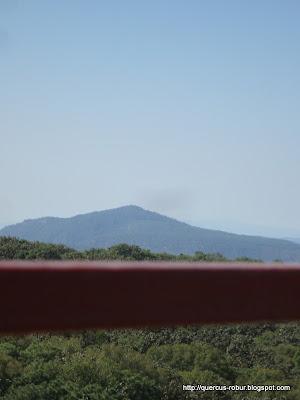 Cerro San Miguel visto desde Torre 2 (BLP)