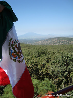 Volcán Cerro de Tequila visto desde Torre 2 (BLP)