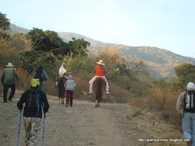 1.3 Km de brecha desde San Miguel a las faldas de Cerro Viejo