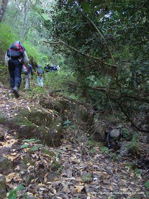Caminando a un costado del arroyo con agua en Cerro Viejo