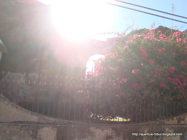 Templo de la Preciosa Sangre de Cristo, vista desde fuera, vista 1