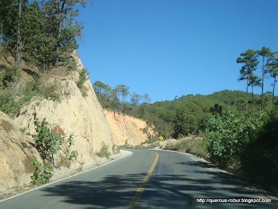 Carretera Mascota Vallarta