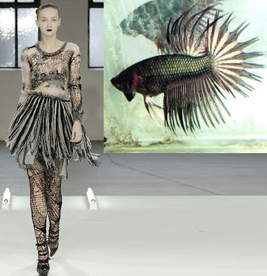 Fashionistas Daily Com Mother Nature Inspired Fashions