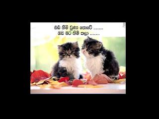 Sinhala Wadan