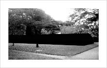 Jardin Botanico 6.45hs