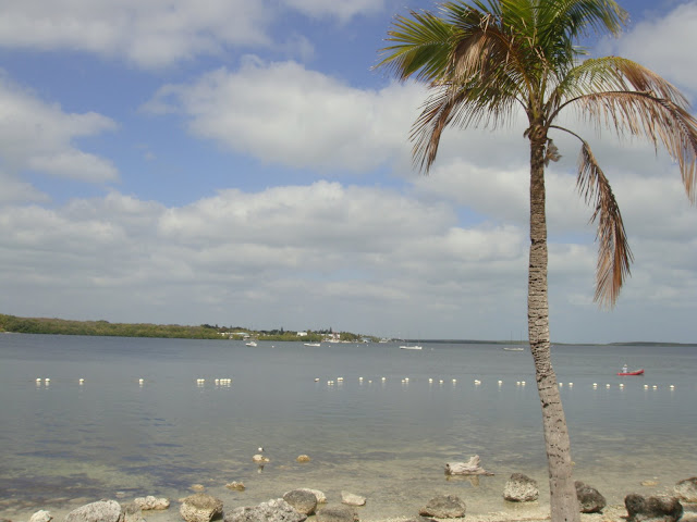 Key Largo, Florida, US, Elisa N, Blog de Viajes, Lifestyle, Travel