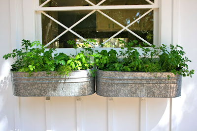 The Polished Pebble Herb Garden Window Box