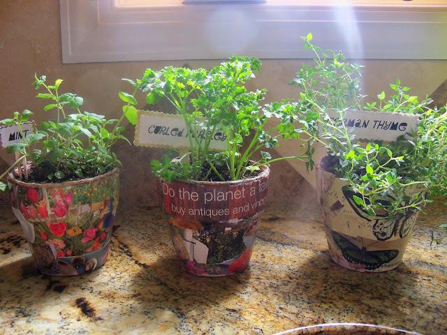 Simple Mosaic Planters | iLoveToCreate