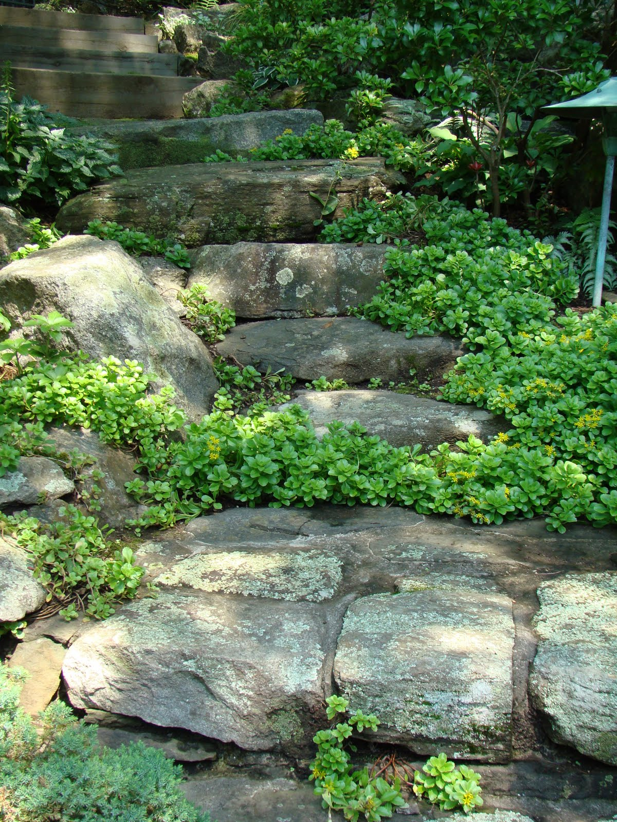 Lovely ... In A Slope, Along Stream Beds And Use Them As Rustic Steps, I  Cultivated A Kind Of U0027rock Awarenessu0027, And Could Sense Which Rocks Were  Amenable To Change ...