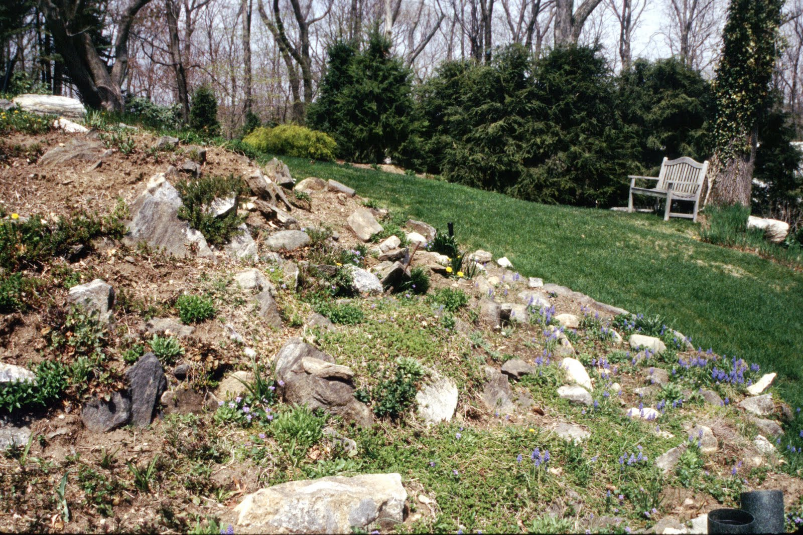 Watch How to Make a Rock Garden in a Trough video