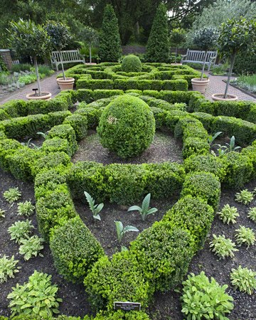 A circular vegetable garden an edible landscape for Edible garden designs