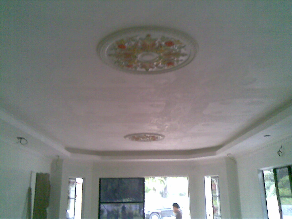Image Plaster Siling Specialist Ceiling Sbdice Pc Android