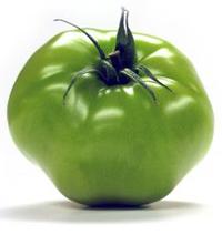 [tomatoe.aspx]