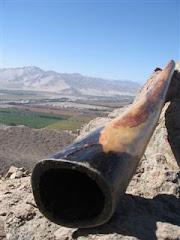 DidgeridooBramador