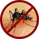demam-berdarah-dengue