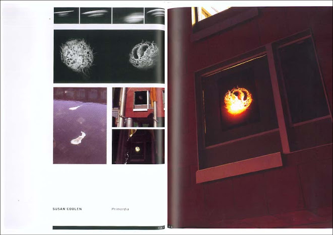 INSTALLATION PROJECT PAGES / 'PRIMORDIA' 2004