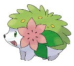 492nd Pokemon Shaymin