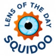 Squidoo Lens of the Day badge