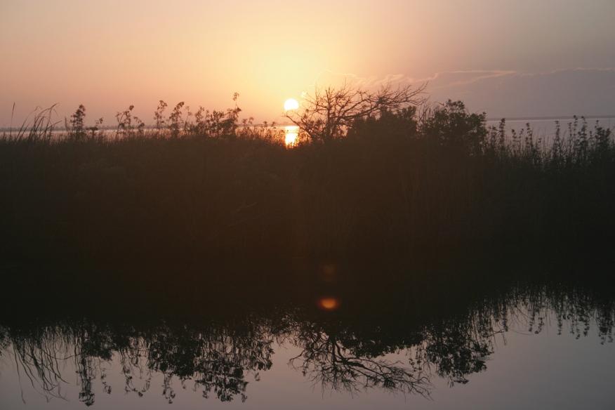 [Outerbanks+Sat+Sun+084+-+Sun+Rise.jpg]