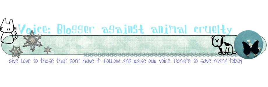 Voice: Bloggers Against Animal Cruelty