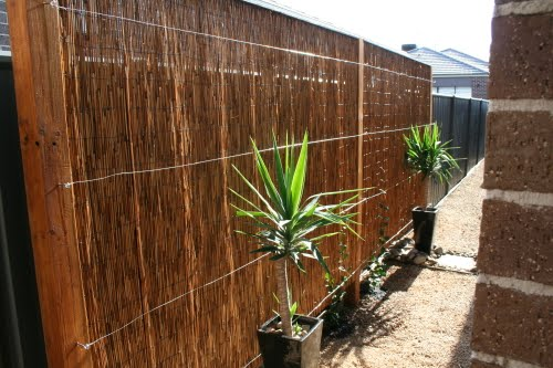 View Topic Advice On Privacy Screen Fence Extension