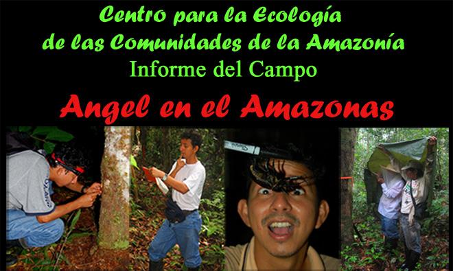 Angel en el Amazonas