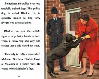 The Presurfer The Ladybird Book Of The Policeman
