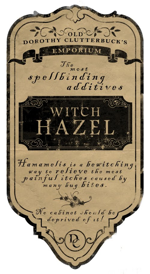 image about Harry Potter Apothecary Labels Free Printable titled Cost-free Printable Potion Bottle Labels For Halloween Cost-free