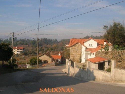 SALDONAS