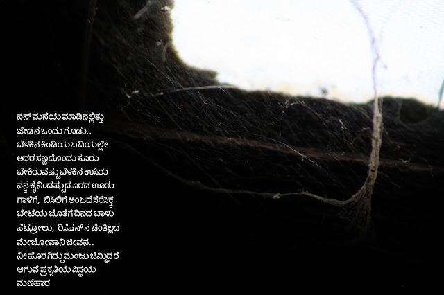 ಜೇಡನ ಬಲೆಯ ಸುತ್ತ