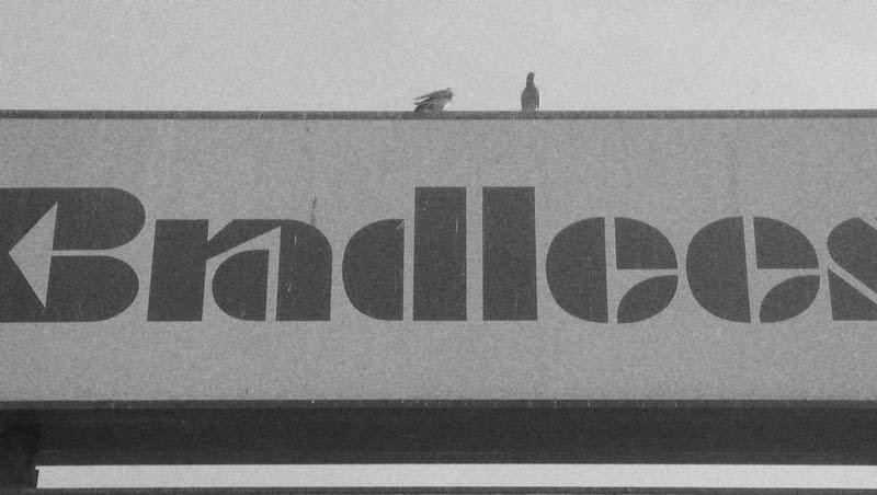 The Caldor Rainbow Bradlees Store Locator Plus