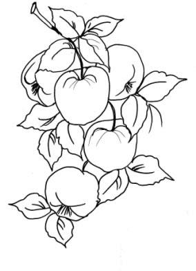 Buscas Rápidas Desenhos De Frutas Para Colorir