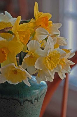 closeup of the daffodil bouquet