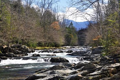 Little Pigeon River, Greenbriar area