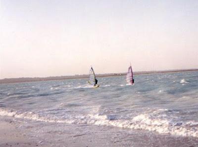 windsurftampico