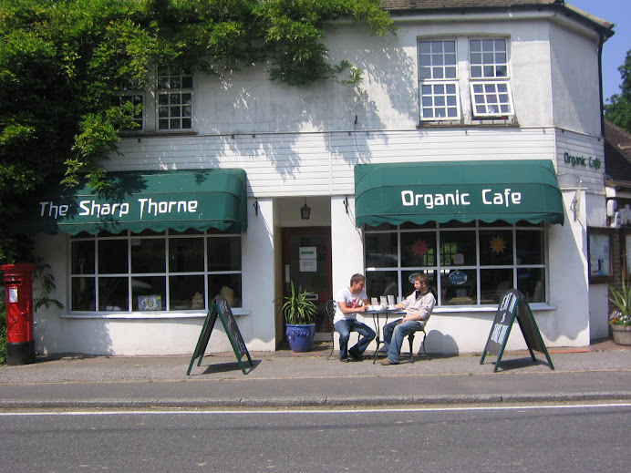 the organic cafe