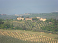 The hamlet of Ponzano surrounded by vineyards and olive groves
