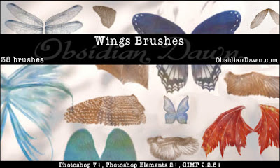 Wings Photoshop Brushes