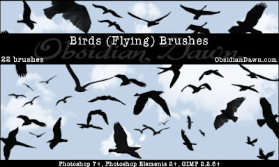 Birds Flying Brushes