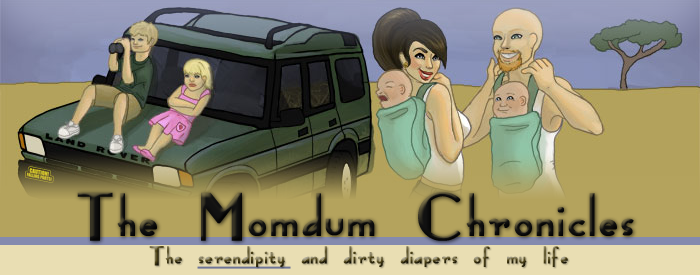 The Momdum Chronicles