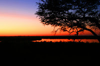 Sonnenuntergang am Linyanti
