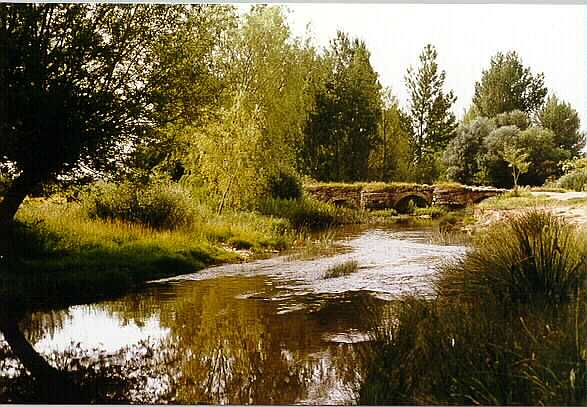 Río Odra