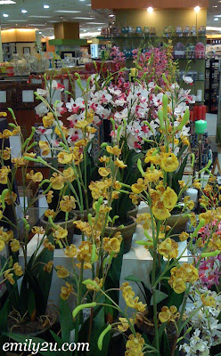 Plastic Orchids