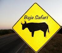 [Baja+Safari+DVD+logo.JPG]