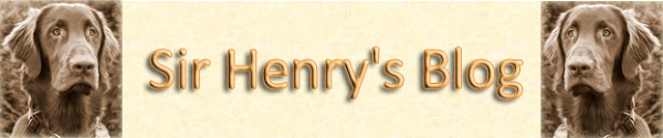 Sir Henry's Blog