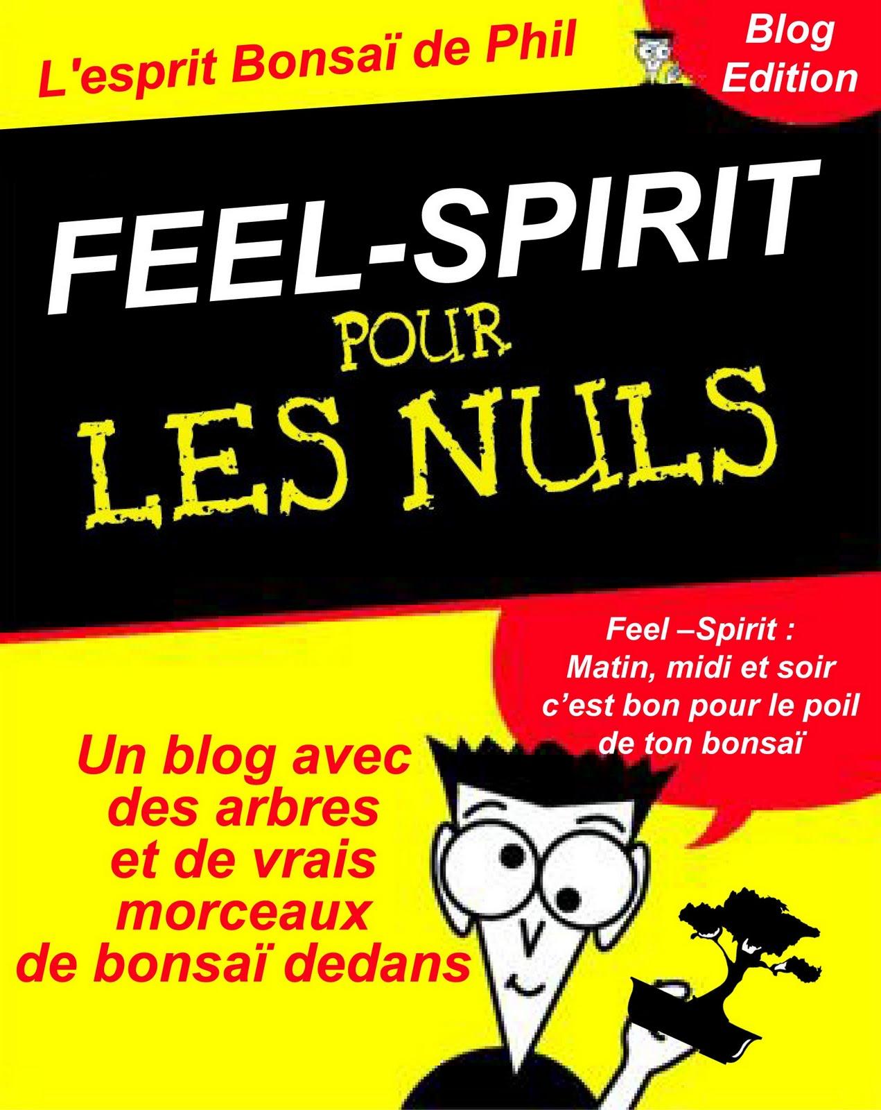 feel spirit l 39 esprit de phil bonsa feel spirit pour. Black Bedroom Furniture Sets. Home Design Ideas