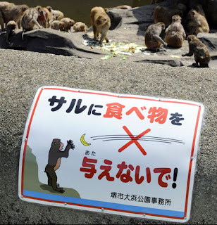 Do not hurl bananas at the monkeys