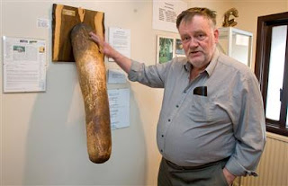 The prized stuffed elephant penis and Professor Penis